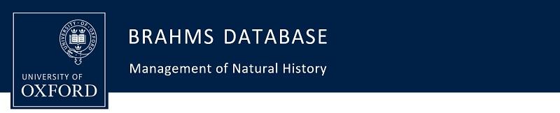 BRAHMS database: BRAHMS v7 - BRAHMS Online