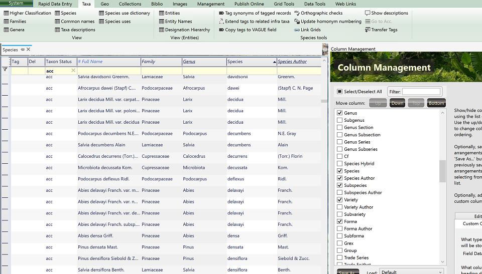BRAHMS database: Explore BRAHMS v8 - BRAHMS Online